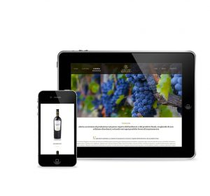 Previous<span>realizzazione sito web Cantine Ruggiero</span><i>→</i>