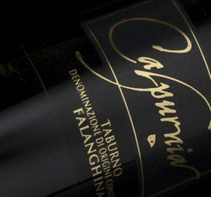 Previous<span>Progetto logo, etichette vino, catalogo prodotti e sito web Serra degli Ilici</span><i>→</i>