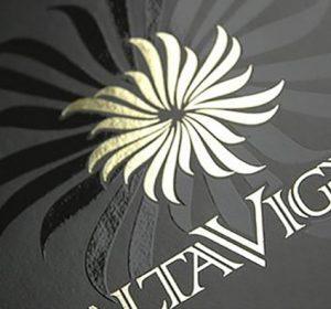 <span>creazione logo Alta Vigna</span><i>→</i>